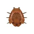 小波踩虫子 v1.0 苹果版