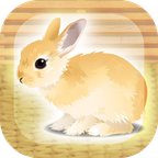 治愈兔兔养成 V1.2 汉化版