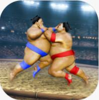 相扑摔跤战士 V1.4 安卓版