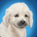 宠物世界:我的动物救援 V4.6 安卓版