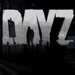 dayz V 安卓版