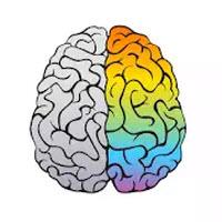 开个脑洞Brain Master v1.3.2 安卓版
