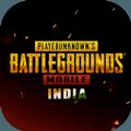 Battlegrounds V1.1.0 安卓版