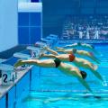史上最蠢游泳 V1.0 安卓版
