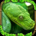蟒蛇模拟器 V1.5 安卓版